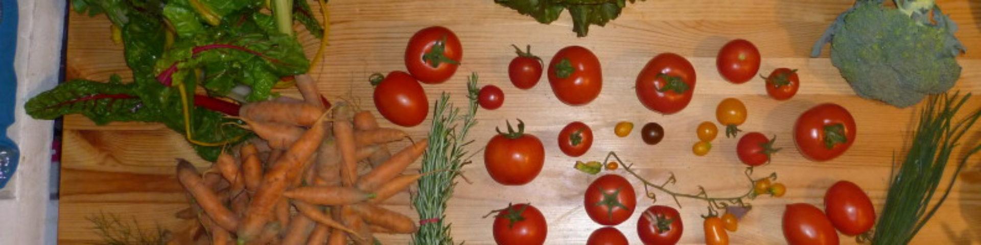 Solidarische Landwirtschaft für Kassel